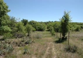 160 County Road 217, Goldthwaite, Texas 76844, ,Farm/Ranch,For Sale,County Road 217,1010