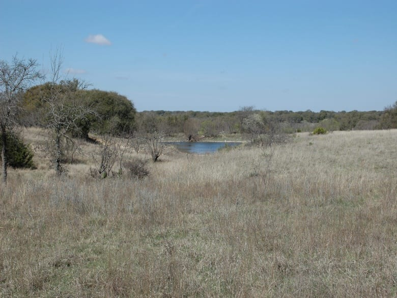 CR 119, Mullin, Texas 76864, ,Farm/Ranch,Sold,CR 119,1018