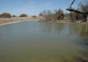 CR 119, Mullin, Texas 76864, ,Farm/Ranch,Sold,CR 119,1018