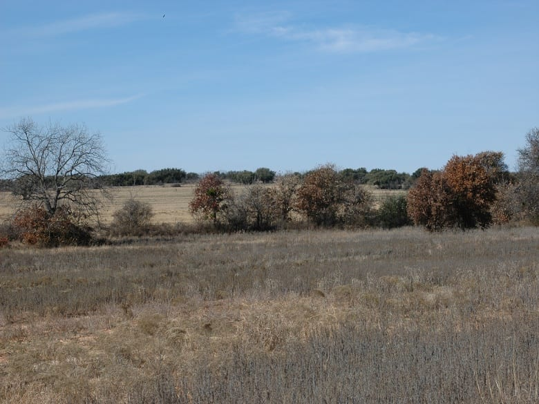 CR 165 808, Sidney, Texas, ,Homes With Acreage,Sold,808,1023