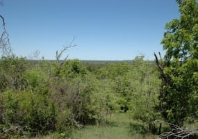 CR 217, GOLDTHWAITE, Texas 76844, ,Farm/Ranch,For Sale,1028