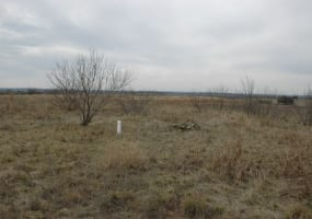 LOT 129 COMANCHE LAKE RD, COMANCHE, Texas 76442, ,Vacant Lots,For Sale,COMANCHE LAKE RD,1032