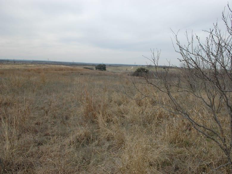 LOT 129 COMANCHE LAKE RD, COMANCHE, Texas 76442, ,Vacant Lots,For Sale,COMANCHE LAKE RD,1032