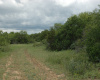 384 PR 812, MERCURY, Texas 76872, ,Homes With Acreage,For Sale,PR 812,1036